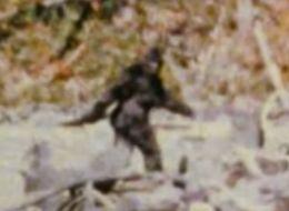 Filmmaker Says Bigfoot 'Ruined' His Life