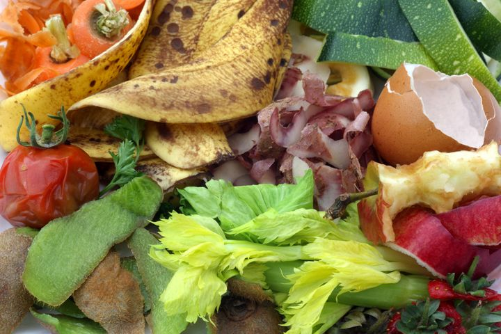 Organic fruit and vegetable food wastecan be easily composted to avoid waste.