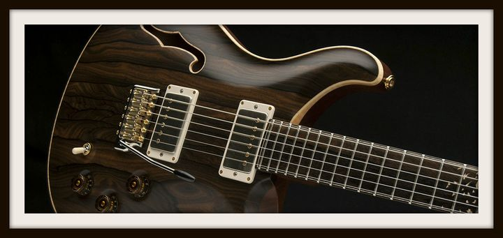 """<a href=""""http://www.prsguitars.com/gom_april/"""" target=""""_blank"""">Private Stock DGT Birds of a Feather Semi-Hollow</a>"""