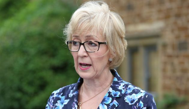Leadsom had said she was 'disgusted' by claims she had said being a mother gave her an edge over Theresa...