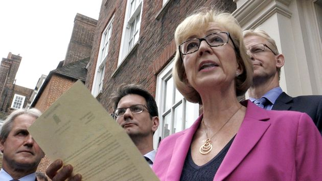 Leadsom became one of the last leading Brexit figures to bow out after she withdrew from the Tory leadership