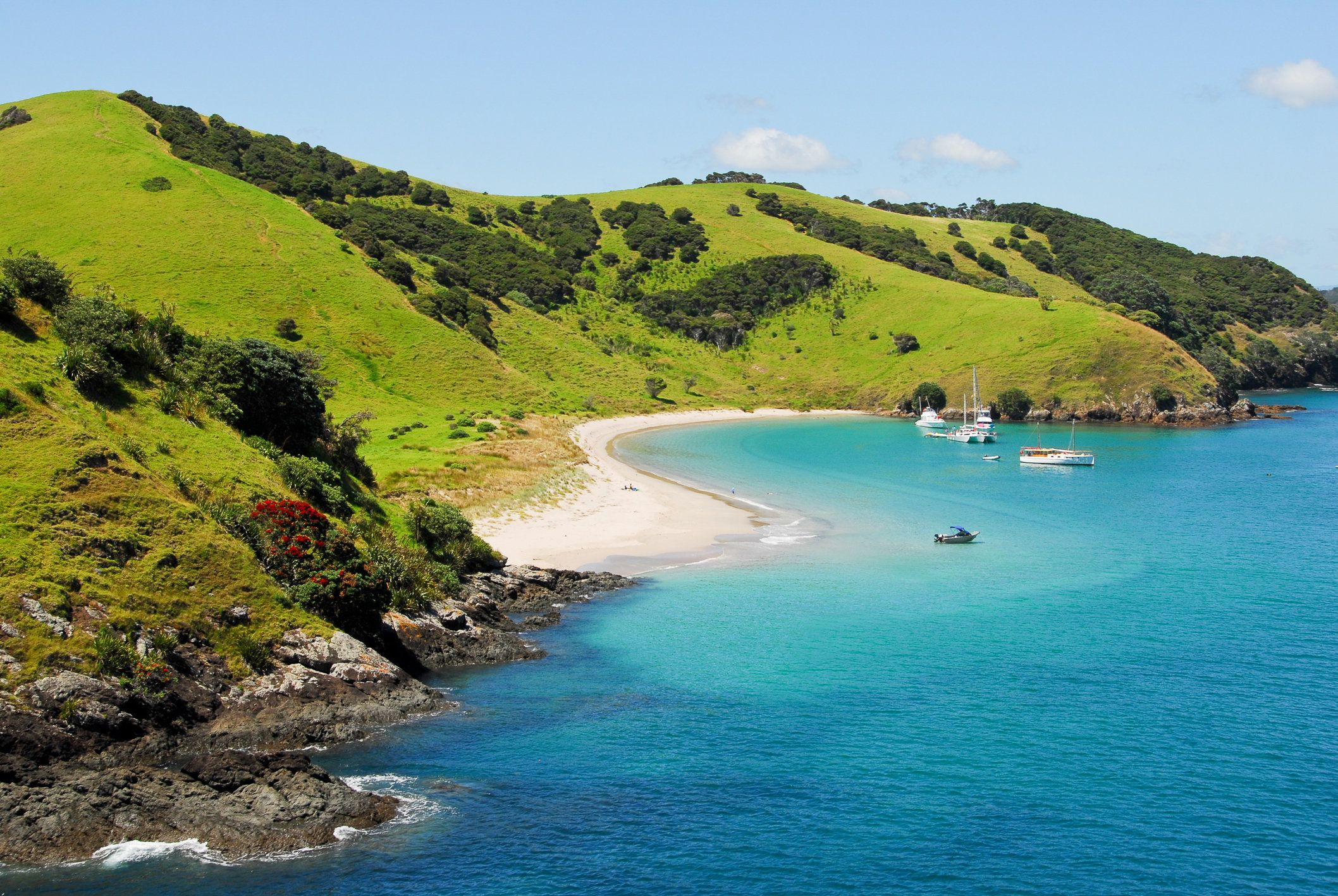 """With <a href=""""https://www.lonelyplanet.com/new-zealand/travel-tips-and-articles/ten-unforgettable-new-zealand-beaches"""" target"""
