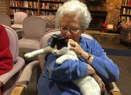 Photos Of Seniors With Old Cats Will Make You Feel Warm And Fuzzy