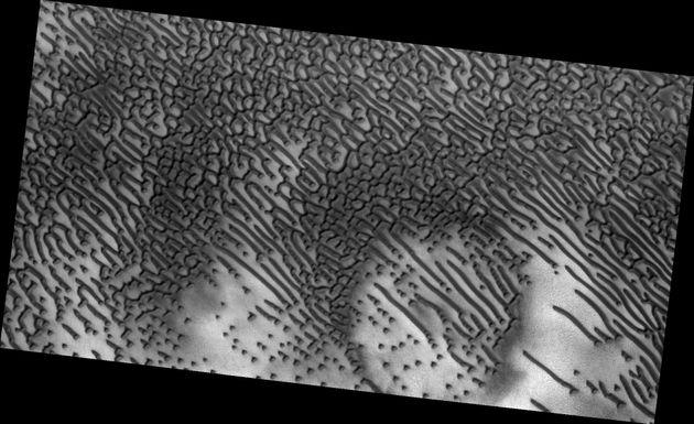Hidden Message From Mars? Bizarre Dune Pattern Looks Like Morse