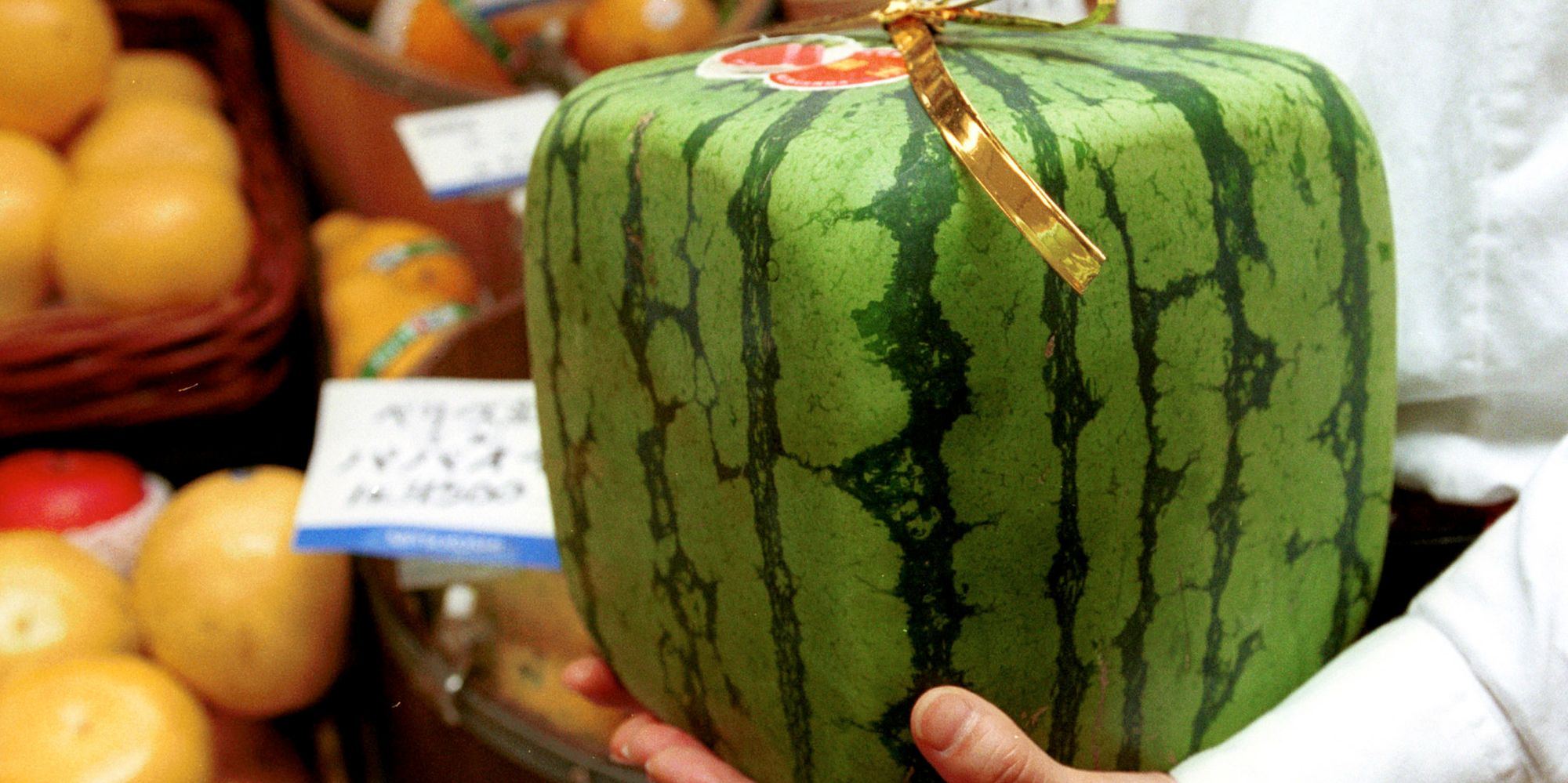 Square watermelons exist as if life wasn 39 t weird enough - Square watermelons how and why ...