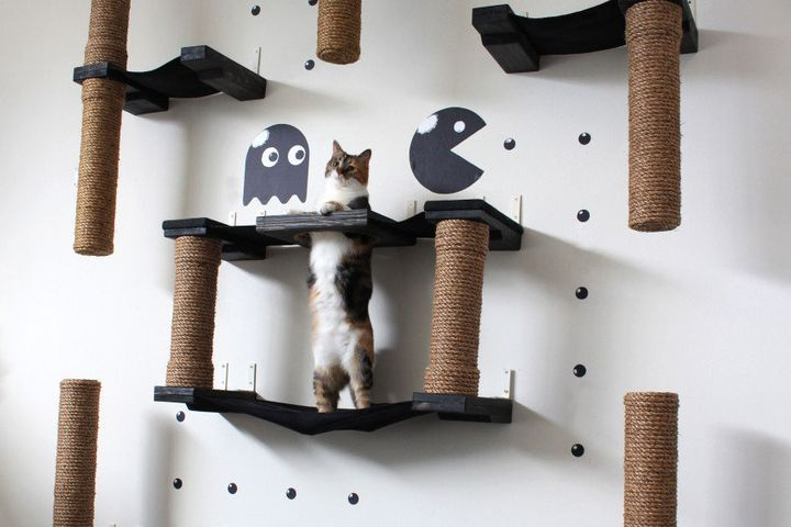 """<a href=""""http://www.catastrophicreations.com/product/pacman-cat-complex/"""" target=""""_blank"""">The PacMan Cat Complex, $600.00</a>"""