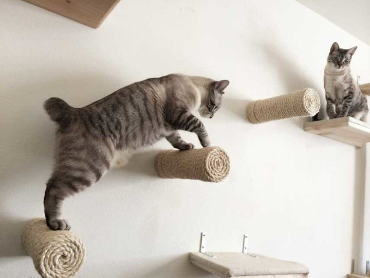 """<a href=""""http://www.catastrophicreations.com/product/sisal-post-steps/"""" target=""""_blank"""">Floating Sisal Post Steps, $35.00</a>"""