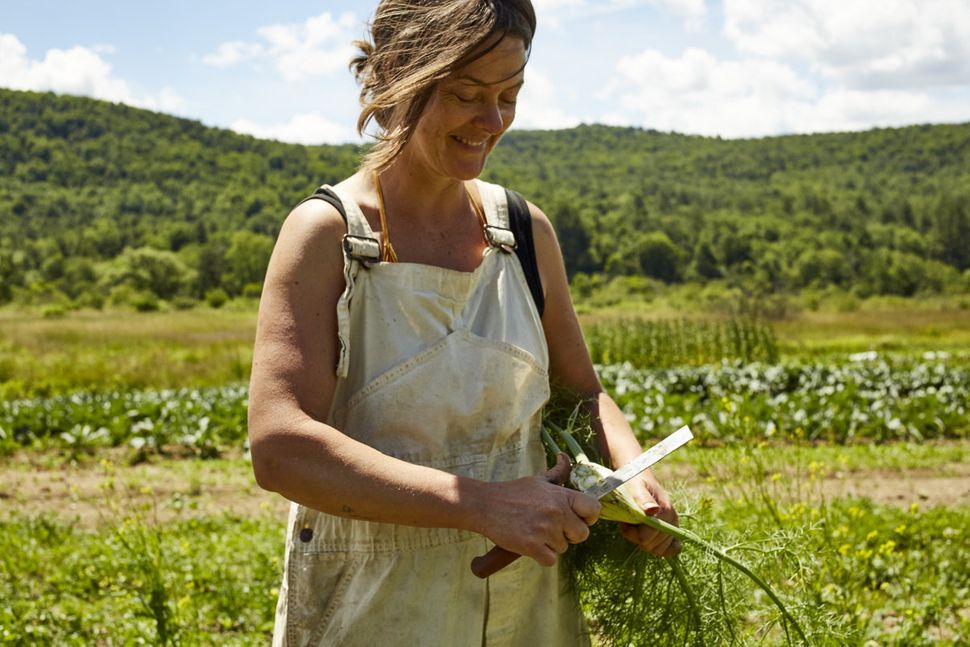 Tianna Kennedy harvests an excess of fennel for cold storage on her Star Route Farm in Charlotteville, New York. She is part