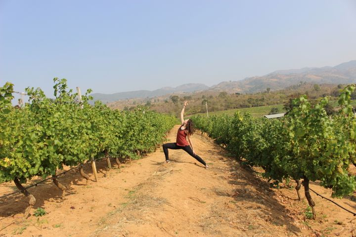 Being a warrior in the vineyards, because I can.