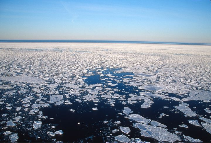 Arctic sea ice is declining in both extent and thickness due to human-caused climate change--but it's not too late to save&nb
