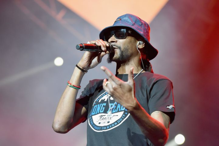 The drug and health insurance industry are funding a Snoop Dogg concert to be held during the Democr