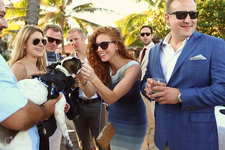 """""""Our guests absolutely loved the dogs and a few have even said they would like to integrate something similar into their own weddings,""""Nouraini said."""