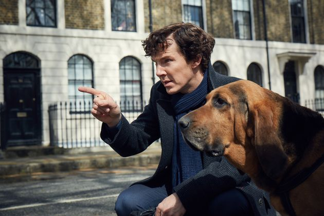 Sherlock Season 4 'Could Be The Last' Says Creator, As First Still Reveals Canine