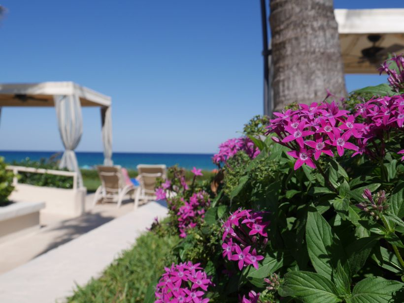 <strong>Four Seasons Resort, Palm Beach</strong>