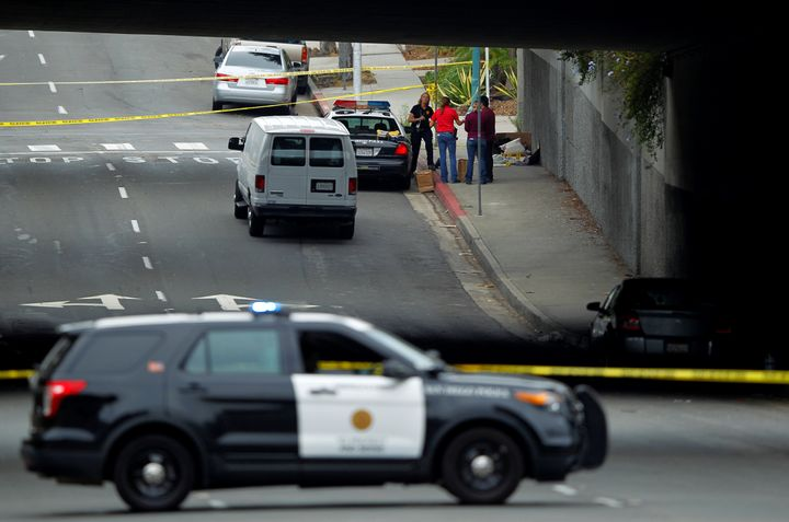 Police investigate the scene under a highway overpass where another apparent attack by a serial killer targeting homeless men