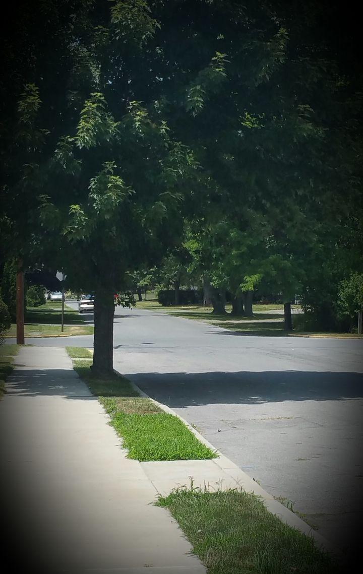 Our quaint street--before thePokémon Go craze