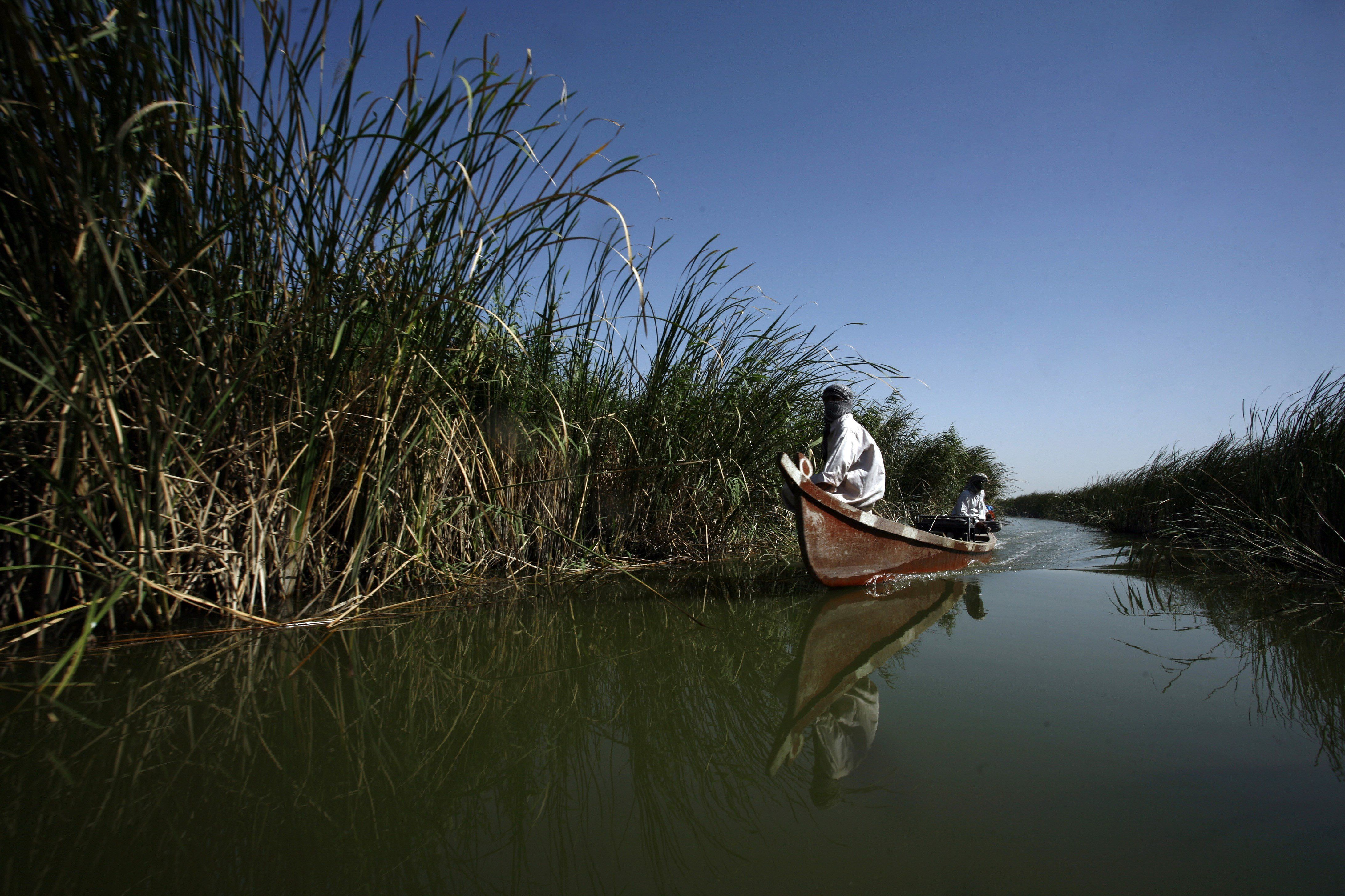 The marshes covered 3,500 square miles at one point.