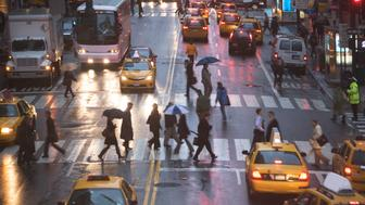 USA, New York state, New York city, pedestrians on zebra crossing