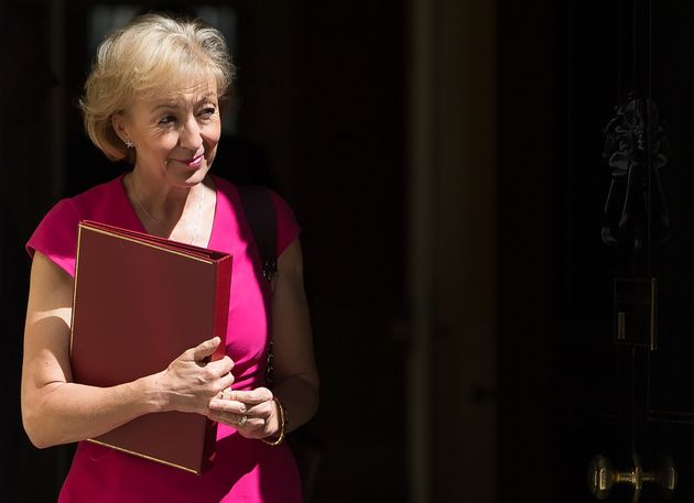 Cabinet Office Publishes Plan To Strip Andrea Leadsom Of Sole Climate Change