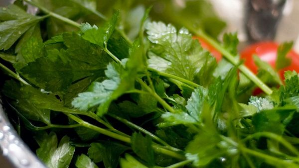 "Removing the leaves from herbs, such as parsley or cilantro, can take a while, especially if you need, say, a <a href=""http:/"