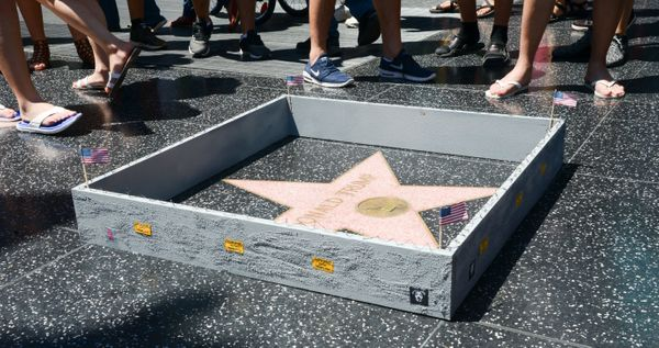 Street artist Plastic Jesus built a wall around Donald Trump's star on the Hollywood Walk of Fame, complete with razor