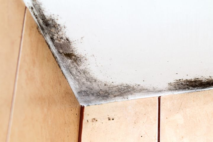 There S An Easy Way To Spot Mold