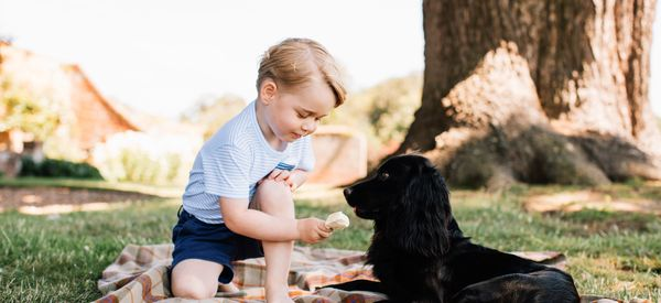 Prince George's Third Birthday Photos Are Adorable