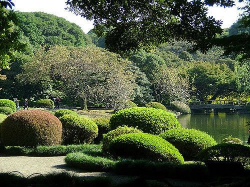 Tokyo Shinjuku Gyoen National Garden