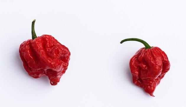 YouTuber Eats Carolina Reaper Chilli Pepper On Video, Immediately Regrets