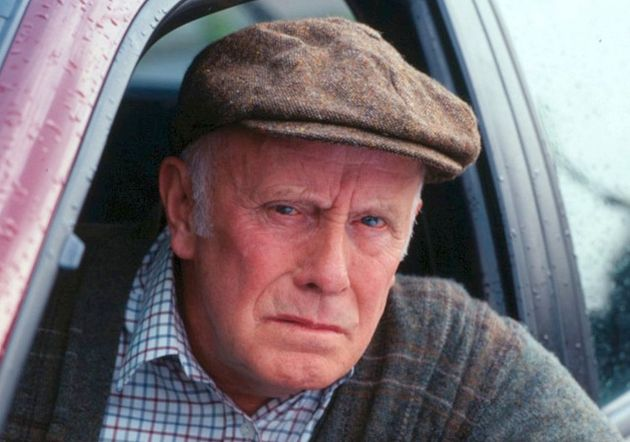 Richard Wilson played Victor Meldrew with grumpy panache that delighted