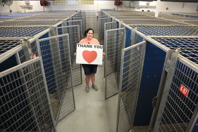 Photo Celebrates 310 Shelter Pets Finding Fur-Ever Homes In One