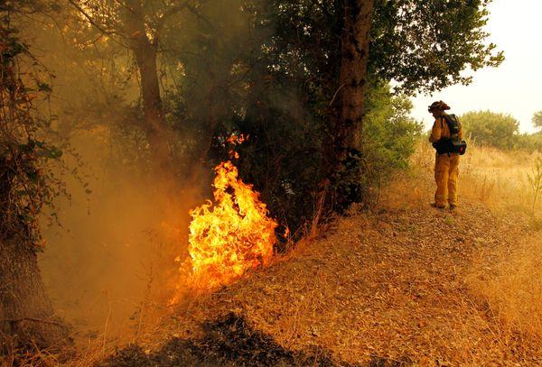 central coast fires - photo #42