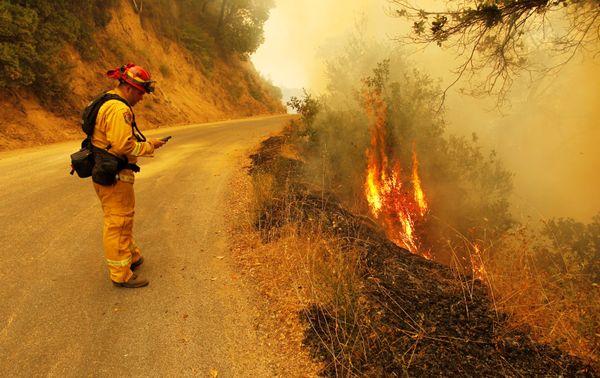central coast fires - photo #38