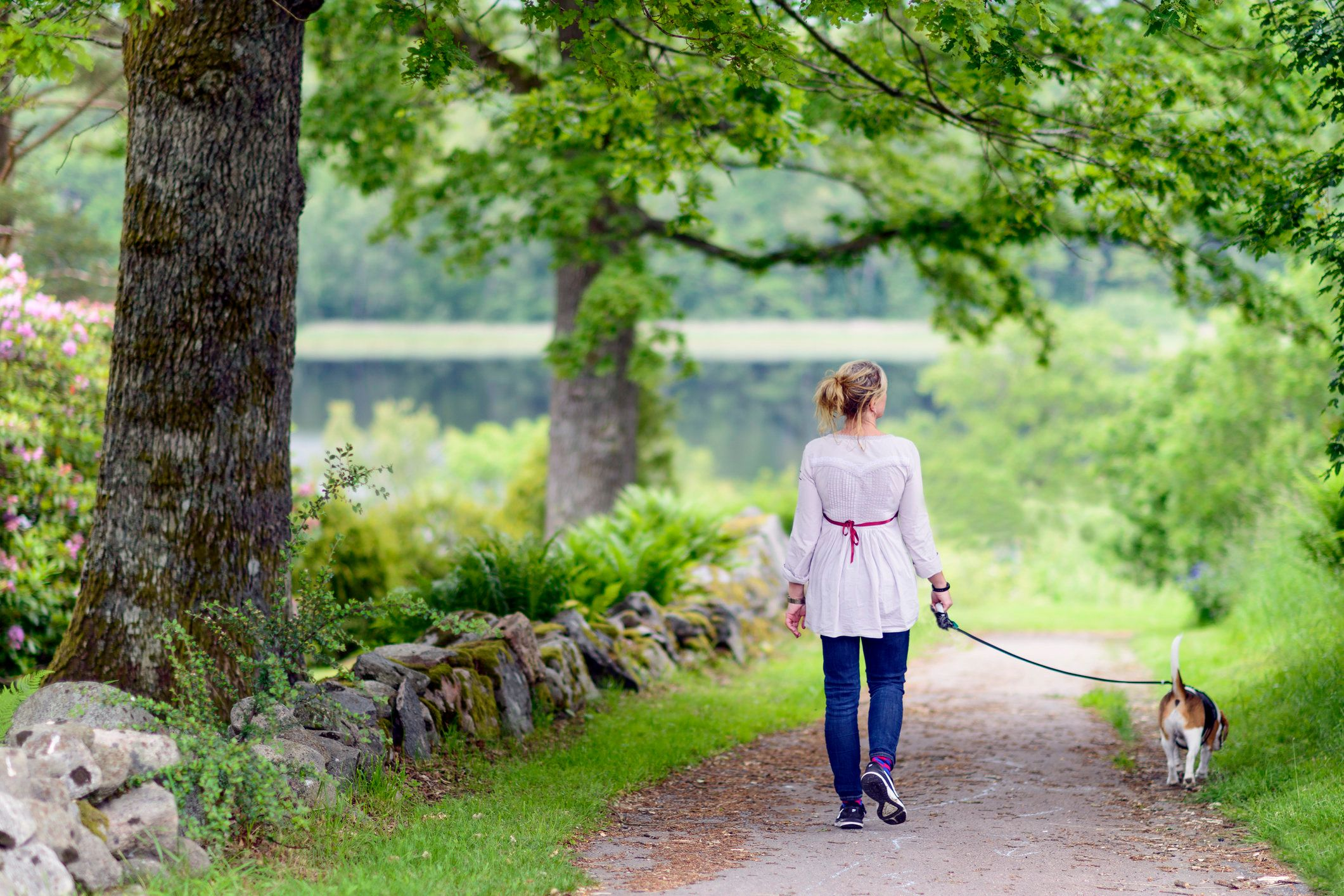 Why You Should Always Go For A Walk After