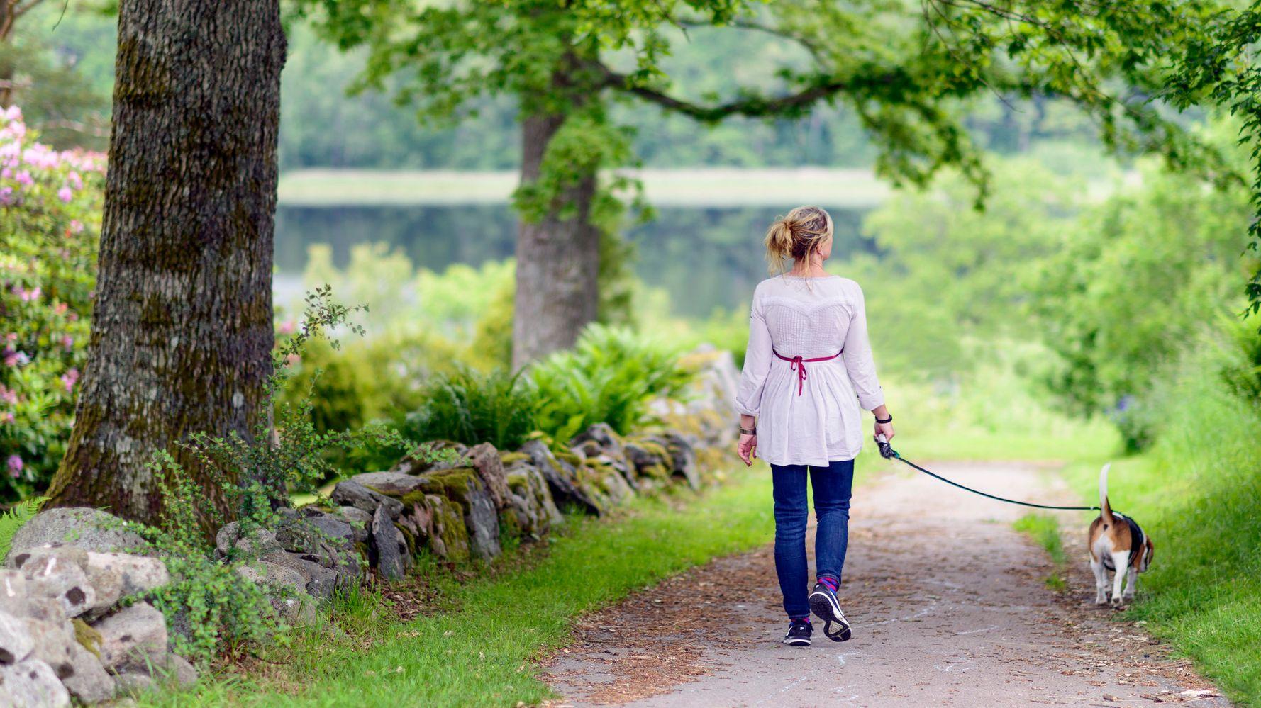 Человек на прогулке
