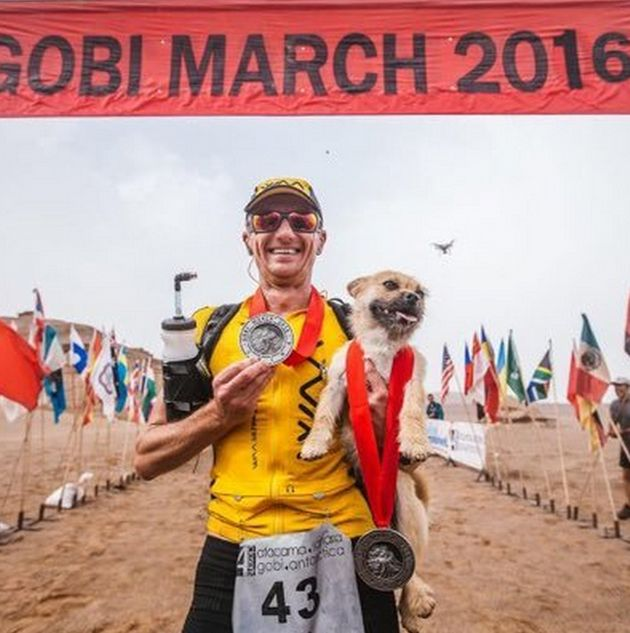 Dion Leonard and Gobi at the finish line of the Gobi March in