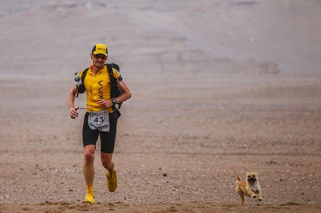 Gobi runs at Leonard's side during the 155 mile-long