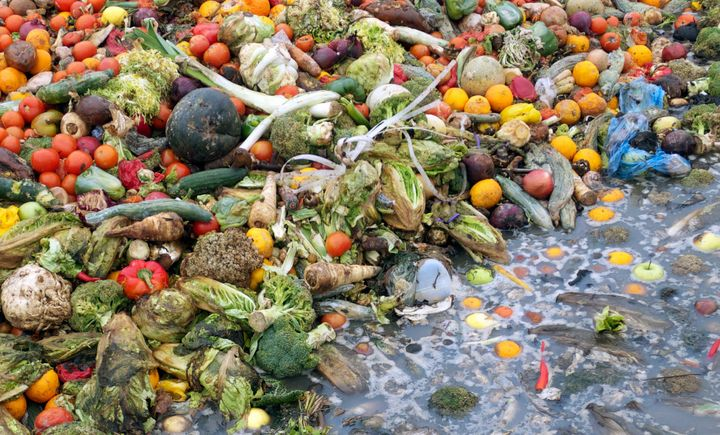 More states are taking steps to limit the excessive amount of food that gets thrown in the trash.