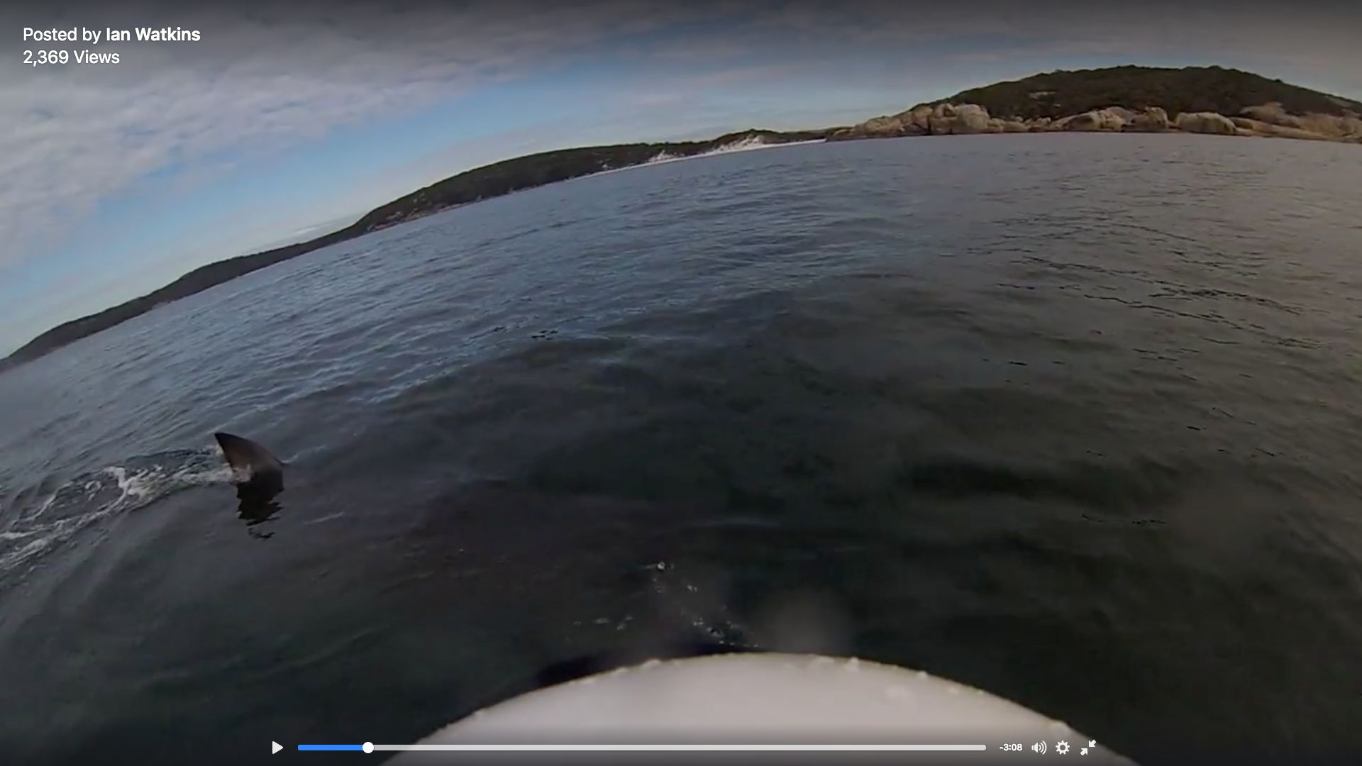 An Australian kayaker recently filmed himself being circled by a massive great white shark.
