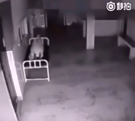 The footage is apparently from a hospital in