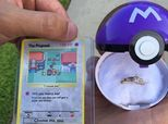 This Pokemon Proposal Is All Kinds Of Adorable