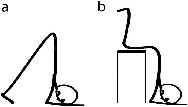 The basic head-down position (figure a), and the position done with the help of a stool (figure b).