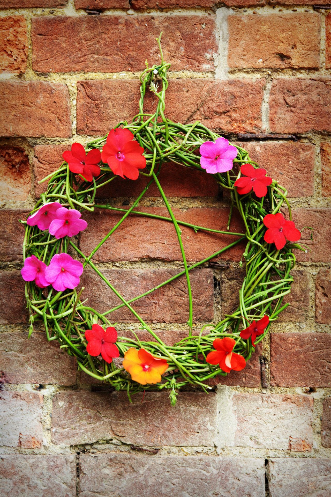 a pagan / wiccan pentangle or pentagram woven from fresh hops and decorated with fresh flowers ( Impatiens / Busy Lizzies ) for Lammas / Lughnasadh or Beltane celebrations.