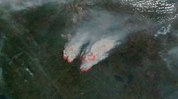 A Look At This Year's Raging Wildfires -- From