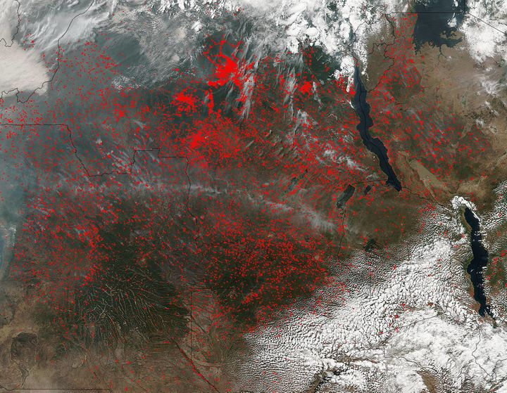 """NASA's Suomi NPP satellite detected thousands of fires burning in central Africa on July 11, 2016. The fires are repre"