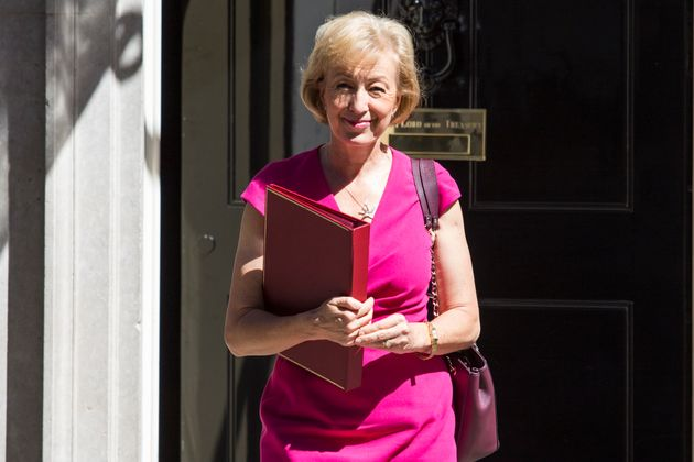 Brexiteers Would Pocket Millions In Farming Subsidies After Leadsom