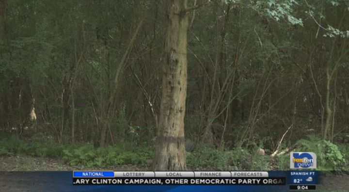 Authorities say the man had duct tape over his mouth while tied to this tree.
