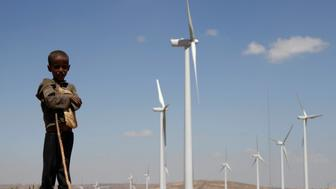 A boy stands in front of wind turbines at the Ashegoda Wind Farm, near a village in Mekelle, Tigray, 780 km (485 miles) north of Addis Ababa October 25, 2013. Africa's biggest wind farm began production in Ethiopia on Saturday, aiding efforts to diversify electricity generation from hydropower plants and help the country become a major regional exporter of energy. Picture taken October 25, 2013. REUTERS/Kumerra Gemechu (ETHIOPIA - Tags: ENERGY BUSINESS ENVIRONMENT TPX IMAGES OF THE DAY)