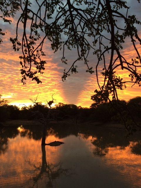 Camp Jubulani at sunset