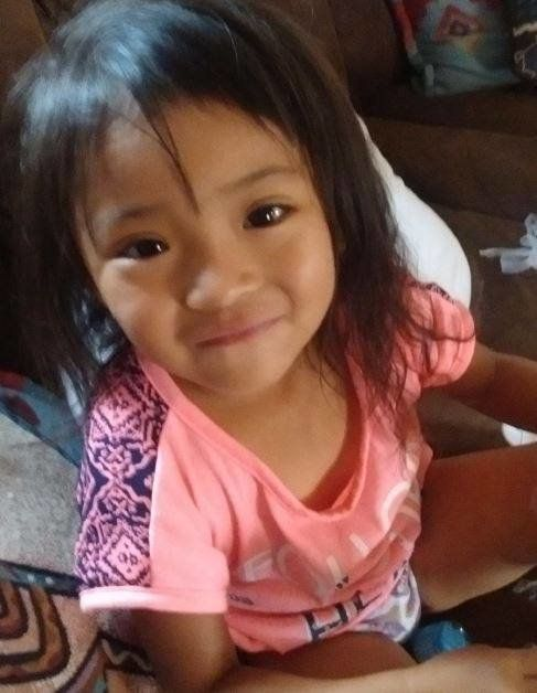 Authorities are seeking leads in the disappearance of 3-year-old Merleah Guinn.